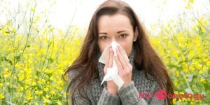 Heads-up, hay fever suffers - Hormonology