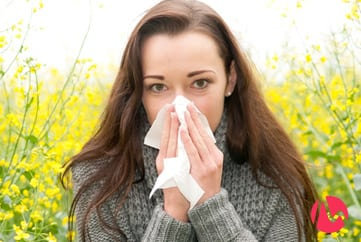 Heads-up, hay fever suffers - My Hormonology